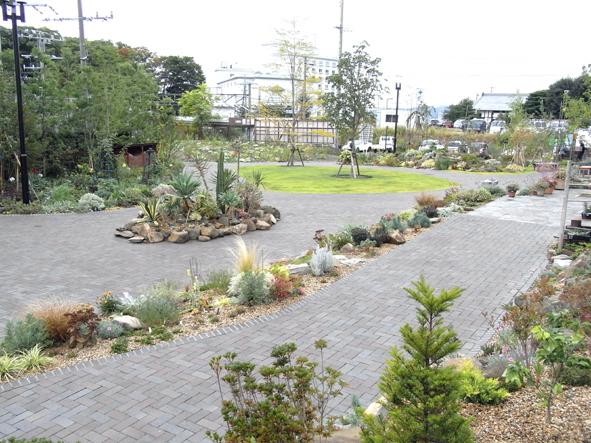 9月29日の庭